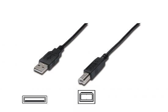 CAVO USB 2.0 A-B 1.8MT (AK300102018S) - PIANURA Informatica