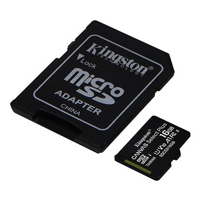 TRANS FLASH 256 GB CANVAS SELECT PLUS (SDCS2/256GB) CLASS 10 - PIANURA Informatica