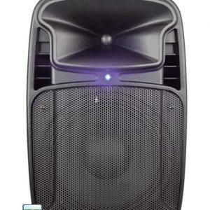 CASSA AUDIO DIFFUSORE AMPLIFICATO TIGER 10A 170 WATT - PIANURA Informatica